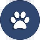 Allgemeine tierärztliche Leistungen